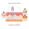 Urządzenie do liftingu falami radiowymi i mezoterapii Young-in Pro 017c #5