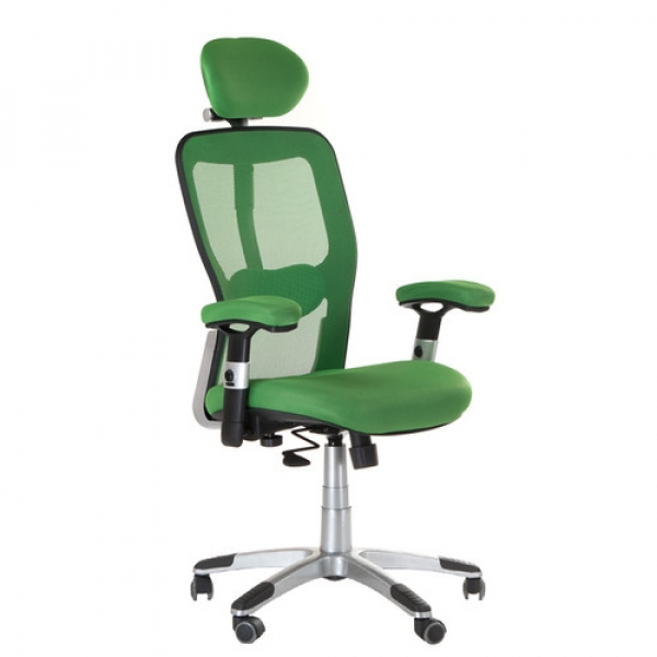 Fotel Ergonomiczny Corpocomfort BX-4147 Zielony #1
